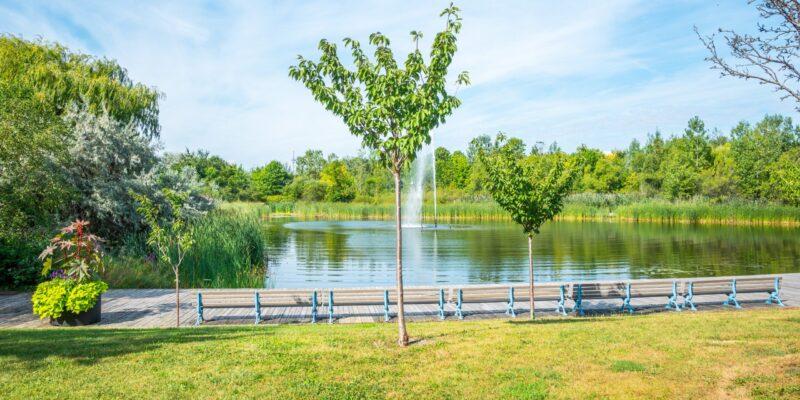 Woodbine Park fountain
